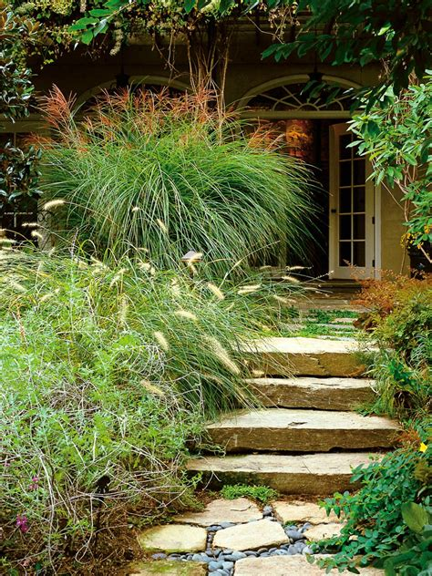 landscape design types types of ornamental grasses hgtv