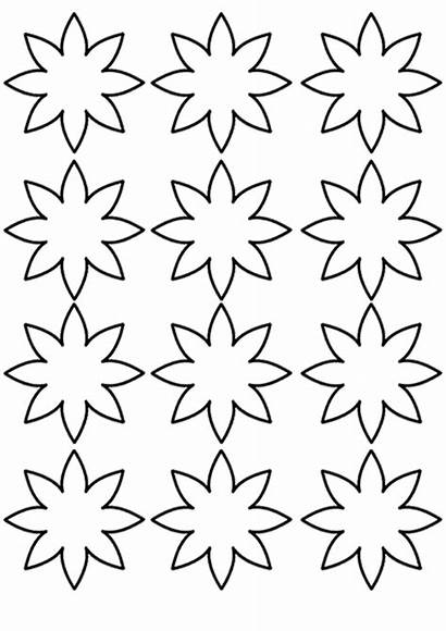 Flower Coloring Template Craft Crafts Preschool Pages
