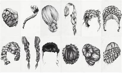 Braid Hairstyles Braided Study Drawing Hair Drawings