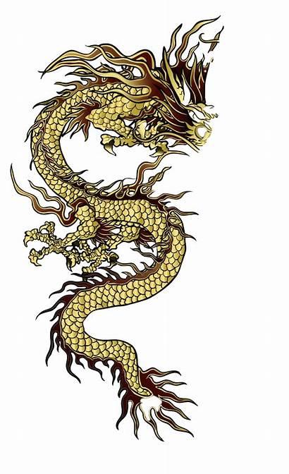 Dragon Transparent Japanese