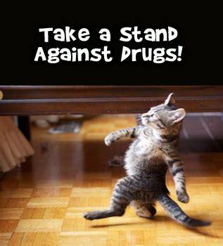 funny drug  slogans posters  memes shout slogans