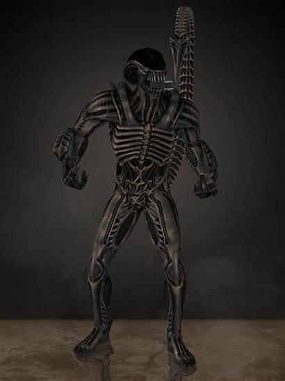 Alien Deviantart Tarkatan Villains Romero1718 Wiki Xenomorphs