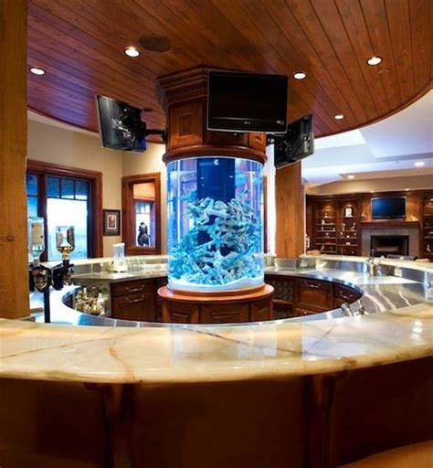 amazing fish tank    center   kitchen