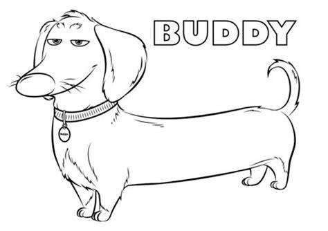 buddy   secret life  pets coloring page secret