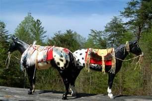 Native American Indian Horse Tack