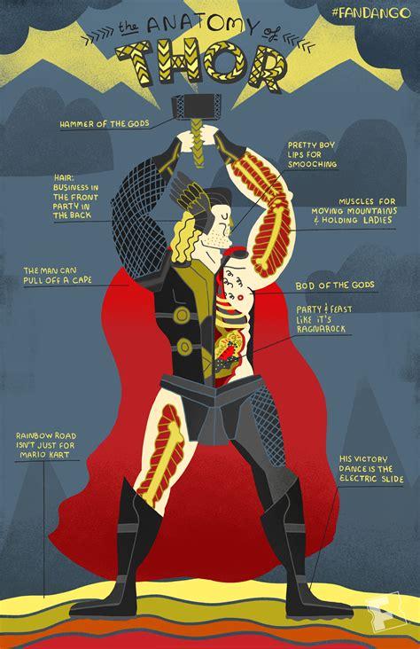 exclusive artwork anatomy   avengers geeking