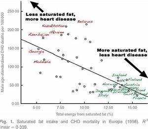Is Cholesterol Killing Us  A Beginner U2019s Guide To