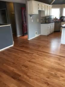 Floor Stain Colors Houses Flooring Picture Ideas Blogule