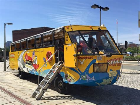 Duck Boats Boston Groupon by Boston Super Duck Tours Groupon Lifehacked1st