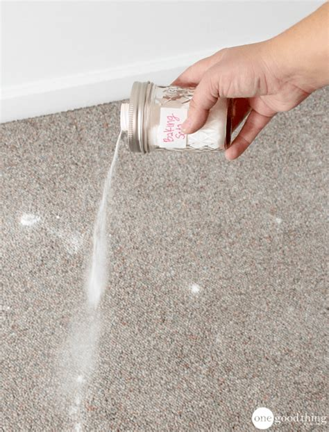 Carpet Cleaners Carpet Cleansing Essentials How To A Carpet Cleaning Solution One