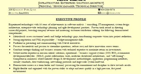solutions architect sample resume format  word