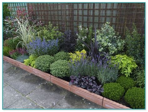 Small Plants For Garden Beds