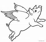 Pig Coloring Pages Drawing Flying Printable Sketch Pigs Cool2bkids Adult Piglet Wings Fly Guinea Paintingvalley Silhouette Drawings Getcolorings sketch template