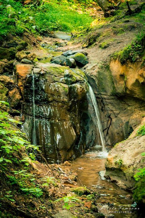Cecīļu dabas taka Ieriķos - mazais aplis » EnterGauja
