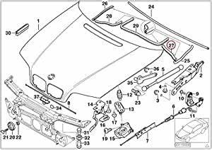 Amazon Com  Bmw Genuine Engine Hood Mounting Parts Engine