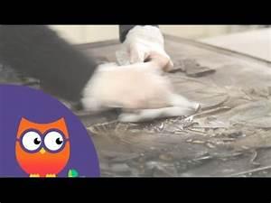 Nettoyer Une Plaque Vitrocéramique : nettoyer une plaque en fonte youtube ~ Melissatoandfro.com Idées de Décoration