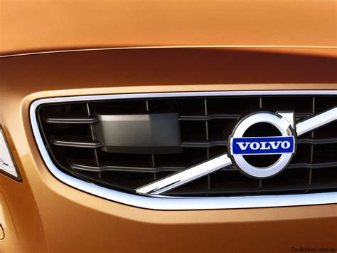 volvo developing animal detection crash avoidance system