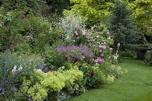 Couvre Sol Vivace : 5 vivaces couvre sols longue floraison qu 39 il faut avoir ~ Premium-room.com Idées de Décoration