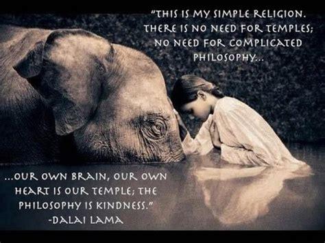dalai lama sprüche dalai lama quote writes