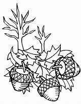 Coloring Pages Acorn Oak Leaf Falling Down Leaves Scrat Ice Age Getcolorings Printable sketch template