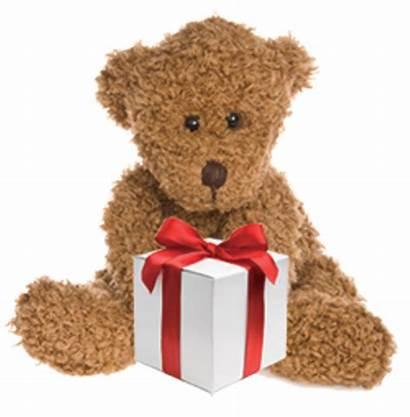 Toys Toy Teddy Bear Christmas Drive Donate