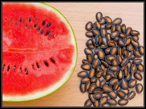 eat watermelon seeds boldskycom