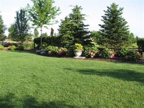 landscape privacy 135 best images about backyard privacy landscape on pinterest backyard landscaping