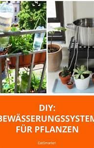 Pflanzen Bewässern Urlaub : 688 besten gr ne beete der gartenblog auf eat smarter ~ Michelbontemps.com Haus und Dekorationen