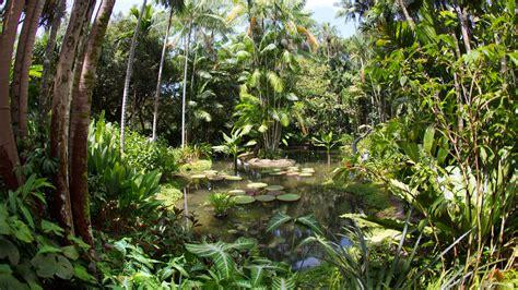 Botanischer Garten Singapur by 7 Reasons To Visit Singapore Botanic Gardens Visit Singapore