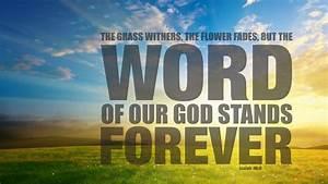 Jesus Wallpapers with Bible Verses ·①