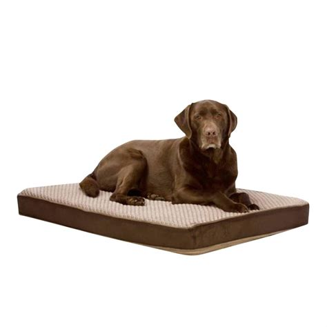 Self Heating Bed by Self Cooling Bed 648099 Pet Accessories At