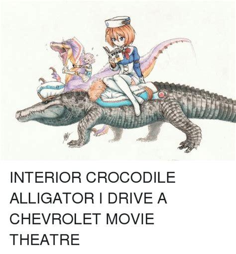 search alligators memes  meme