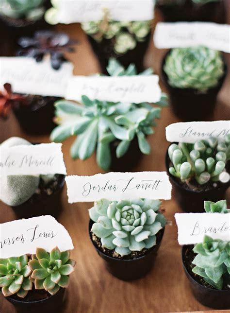 unexpected ways   succulents  part   wedding
