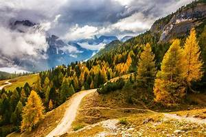 Fall, Mountain, Clouds, Forest, Road, Alps, Italy, Nature