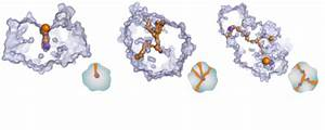 Protein Engineering Group