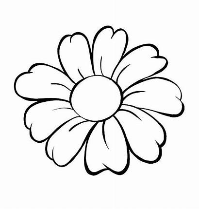 Flower Coloring Pages Single Daisy Printable Outline