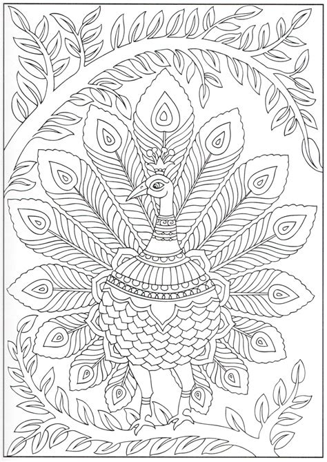 peacock coloring page  animal coloring books
