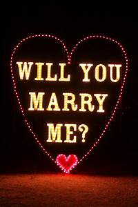 Will you marry me city of yukon for Marry me light up letters