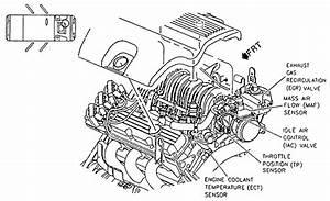 2000 Buick Century Fuel Line Diagram