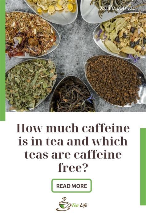 Both drinks also have other nutrients that offer potential health benefits. Which Teas are Caffeine Free and What are Effects of Caffeine On Your Body in 2020 | Green tea ...