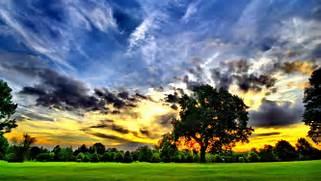 Beautiful nature cool ...