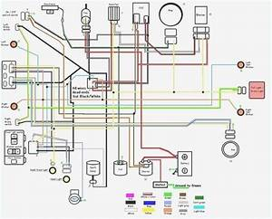 Diagram Gy6 50cc Wiring Diagram Full Version Hd Quality Wiring Diagram Voipdiagram Sunrise Parachutisme Fr