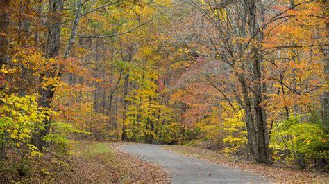 fall camping falls creek southern spots living