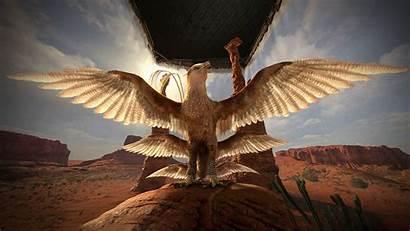 Beasts Thunderbird Fantastic Potter Harry Vr Beast