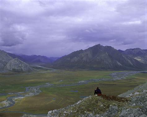 Arctic National Wildlife Refuge Wikipedia
