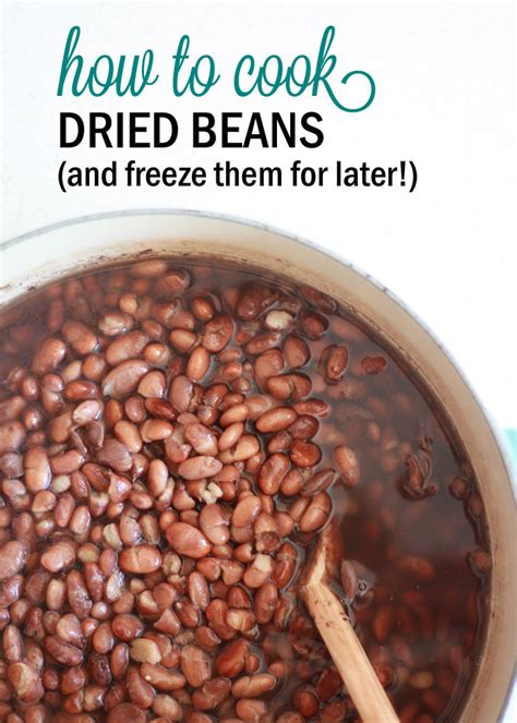 freeze beans how to cook dried beans and freeze them for later kitchen treaty
