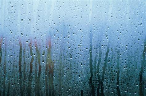 Что делать когда плачут окна в частном доме?