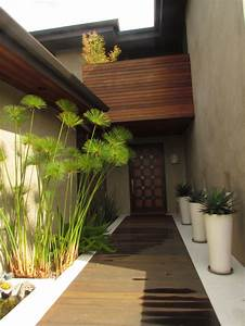 Plantes Grimpantes Pot Pour Terrasse : fleurir son balcon ou sa terrasse selon son exposition ~ Premium-room.com Idées de Décoration