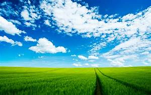 The Most Beautiful Nature HD Wallpaper