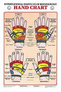 Hand Reflexology Chart Charts Hand Chart 17 X 21